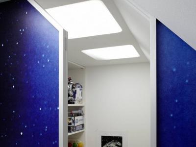 dachschr genregal. Black Bedroom Furniture Sets. Home Design Ideas